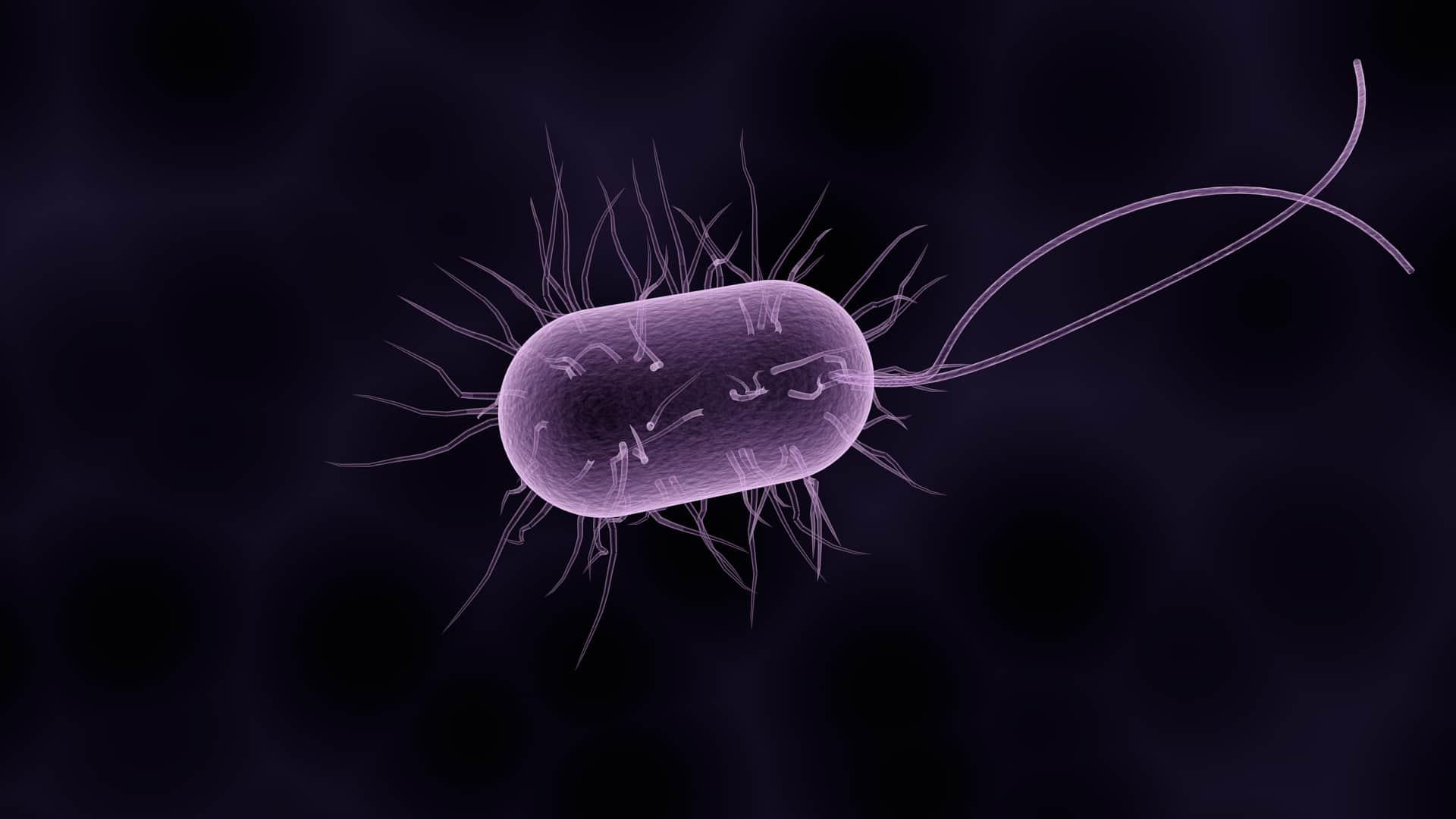 Transilvania Healing Centre, Medicina Bioelectromagnetica how do we get sick? How do we get sick? IMG D0FE45A1E535 1